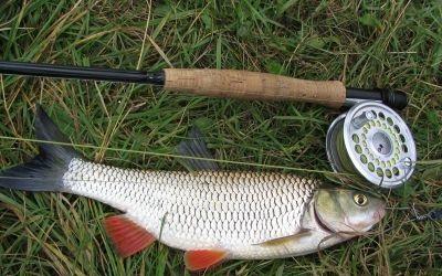 О ловле рыбы нахлыстом
