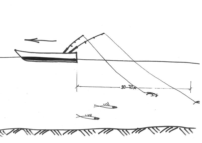 Схема троллинговой проводки.