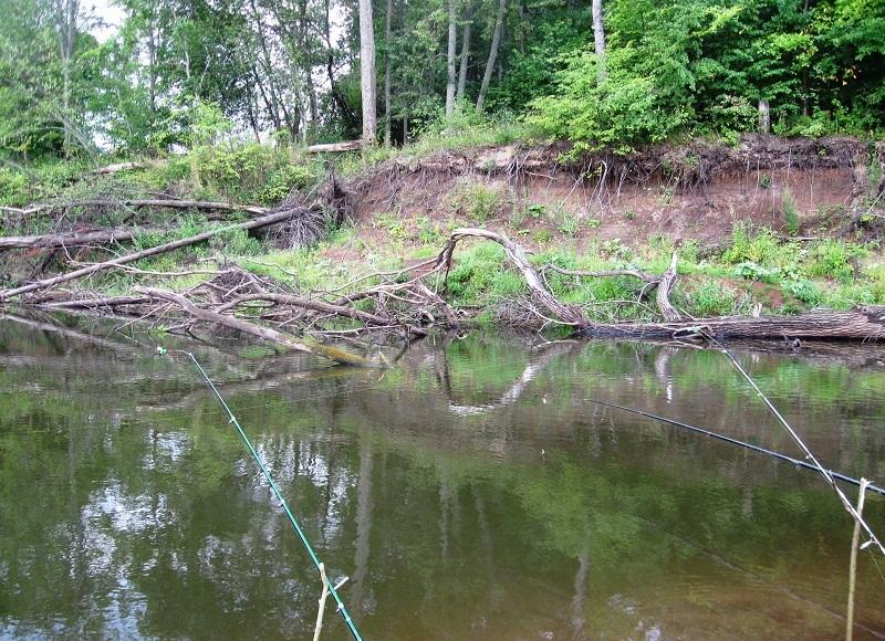 Фидерная оснастка для ловли на течении