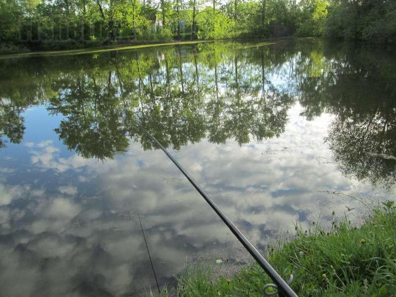 Пример водоема для карасевой рыбалки.