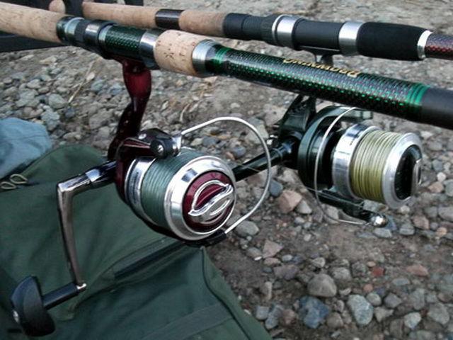 Для сазаньей рыбалки все должно быть мощным.