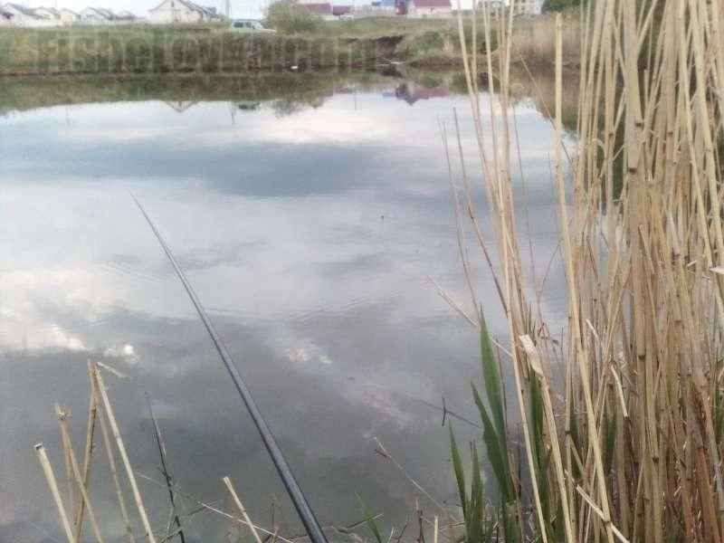 Обыкновенный сельский пруд - испытательный полигон для кружков.