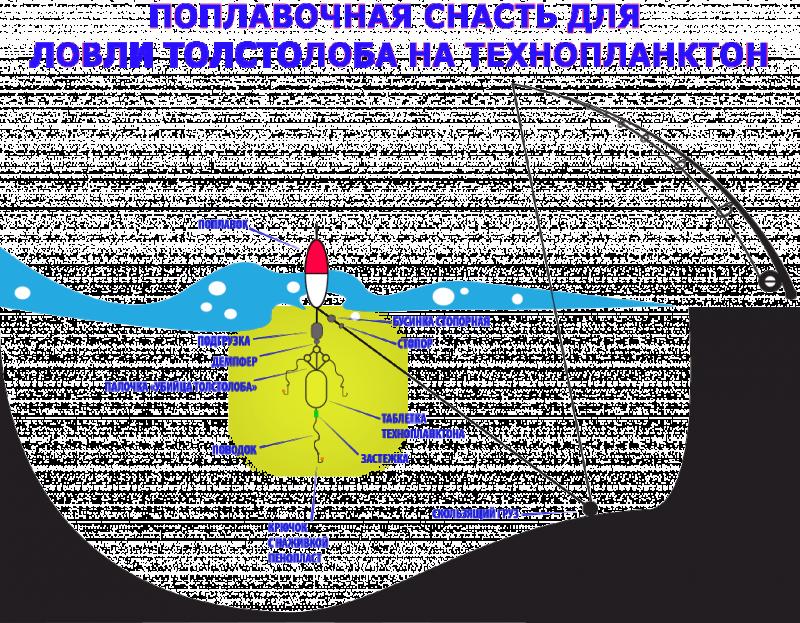 Схема монтажа поплавочной оснастки.