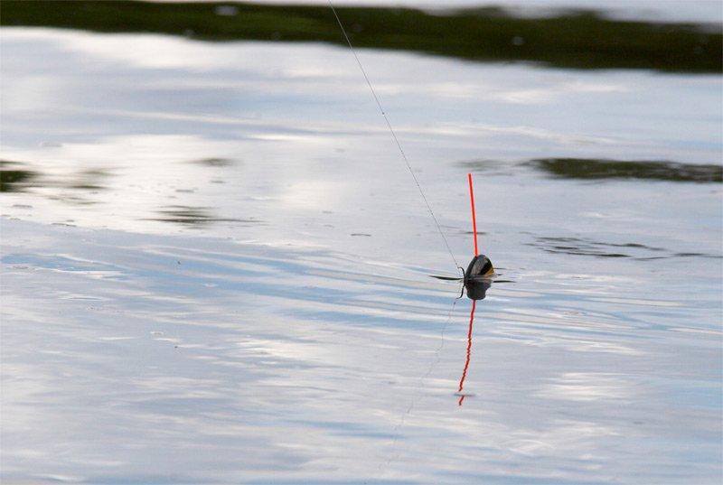 Сборка и работа удочки для ловли впроводку