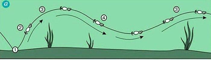 Волнообразная проводка.