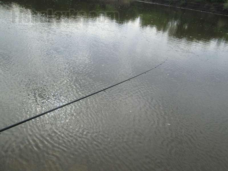 Фидер для речной ловли.