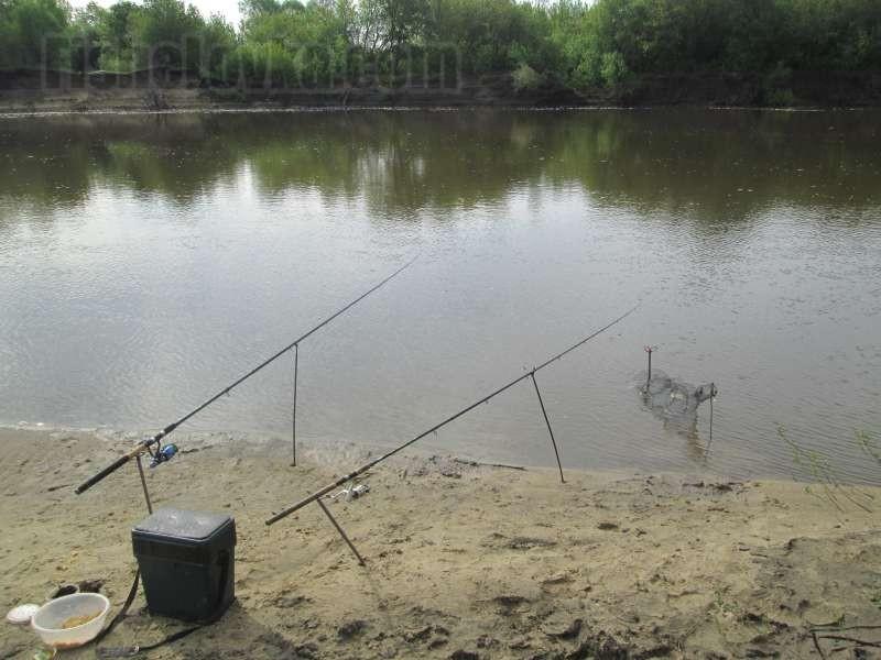 Фидеры на реке.