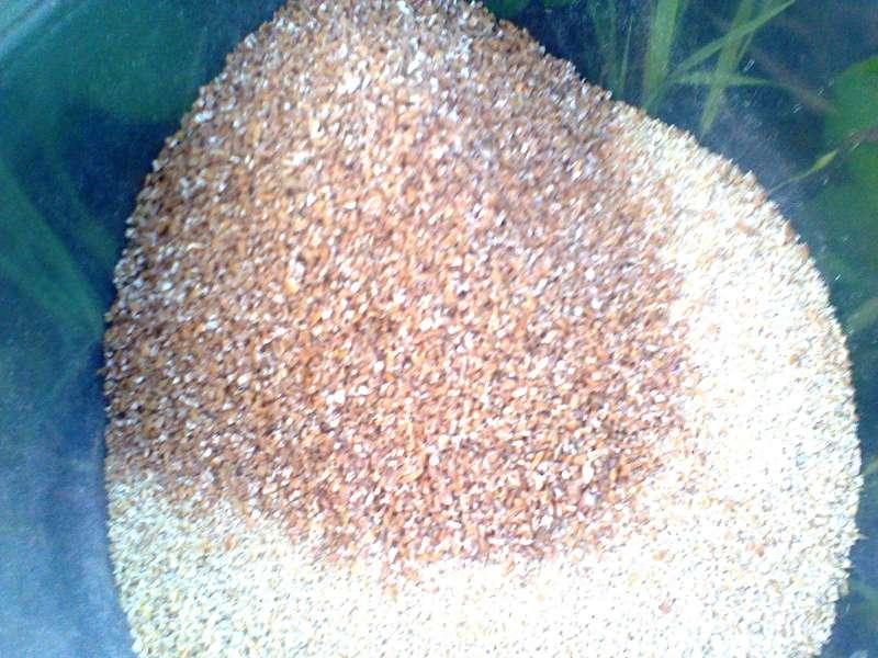 Добавляем пшеничную дробленку.