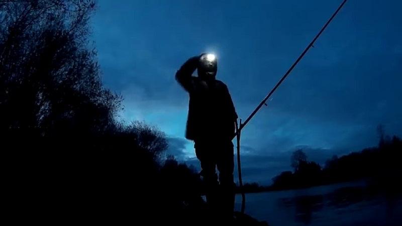 Как ловить налима осенью на фидер?