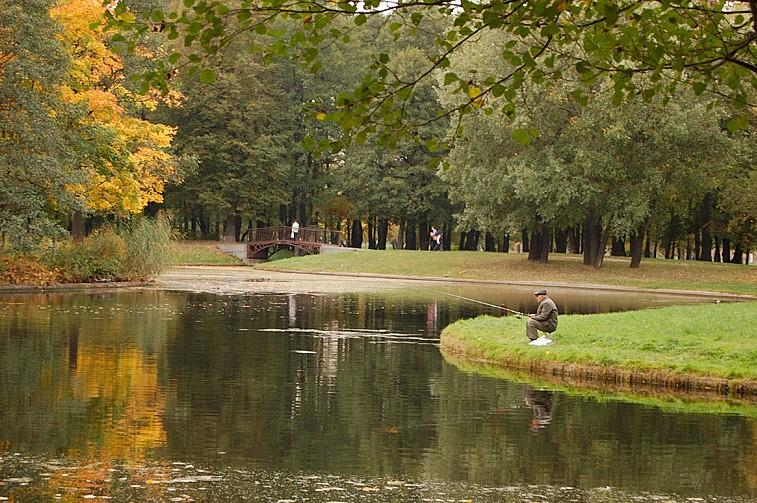 Типичный карасевый пруд.