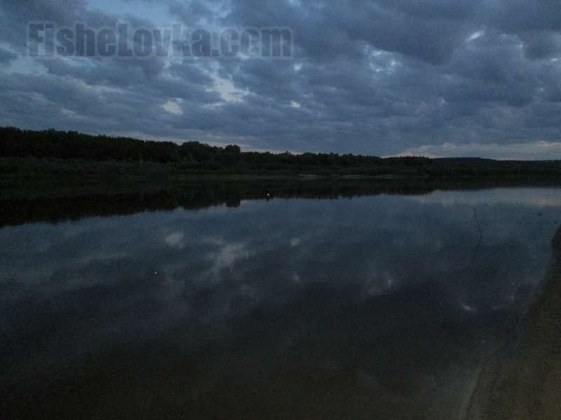 Ночь на реке - оптимальное время для ловли налима.