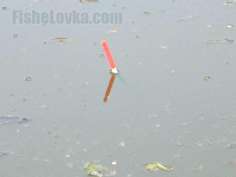 Наилегчайший поплавок - очень важная деталь.