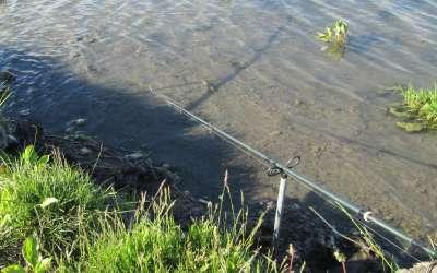 Выбор оптимальной длины поводка для ловли на фидерную снасть