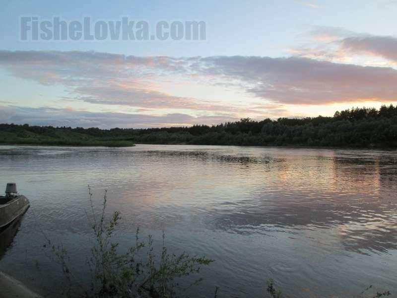 На средней реке вблизи острова.