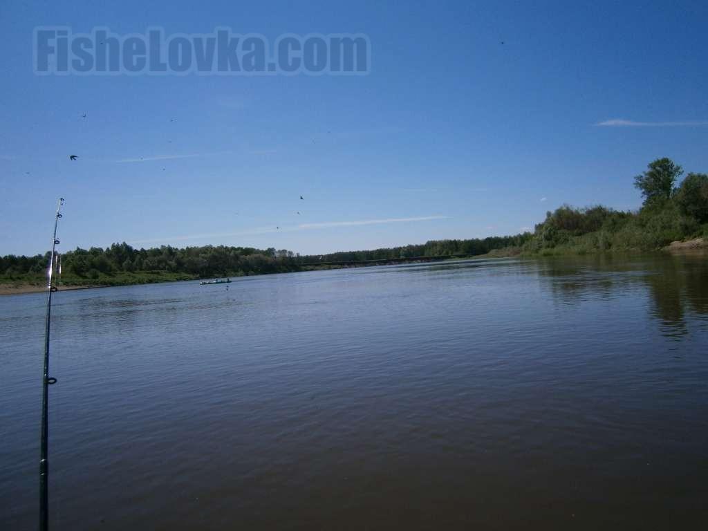 Спиннинг для троллинга на реке