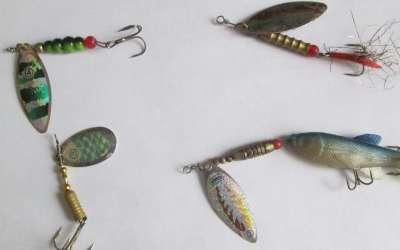 Особенности выбора уловистых вращающихся блесен для ловли щуки