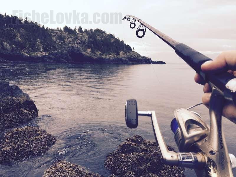Удилище для морской ловли.
