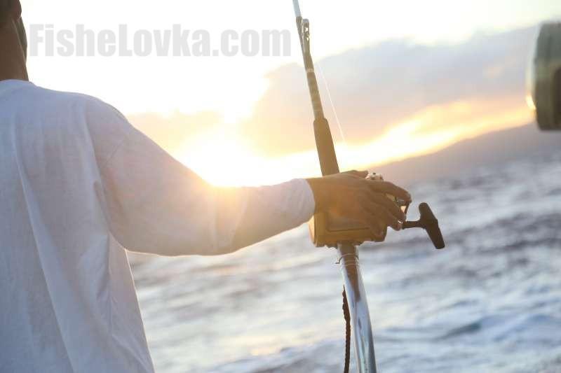 Для ловли крупной рыбы нужна надежная снасть.