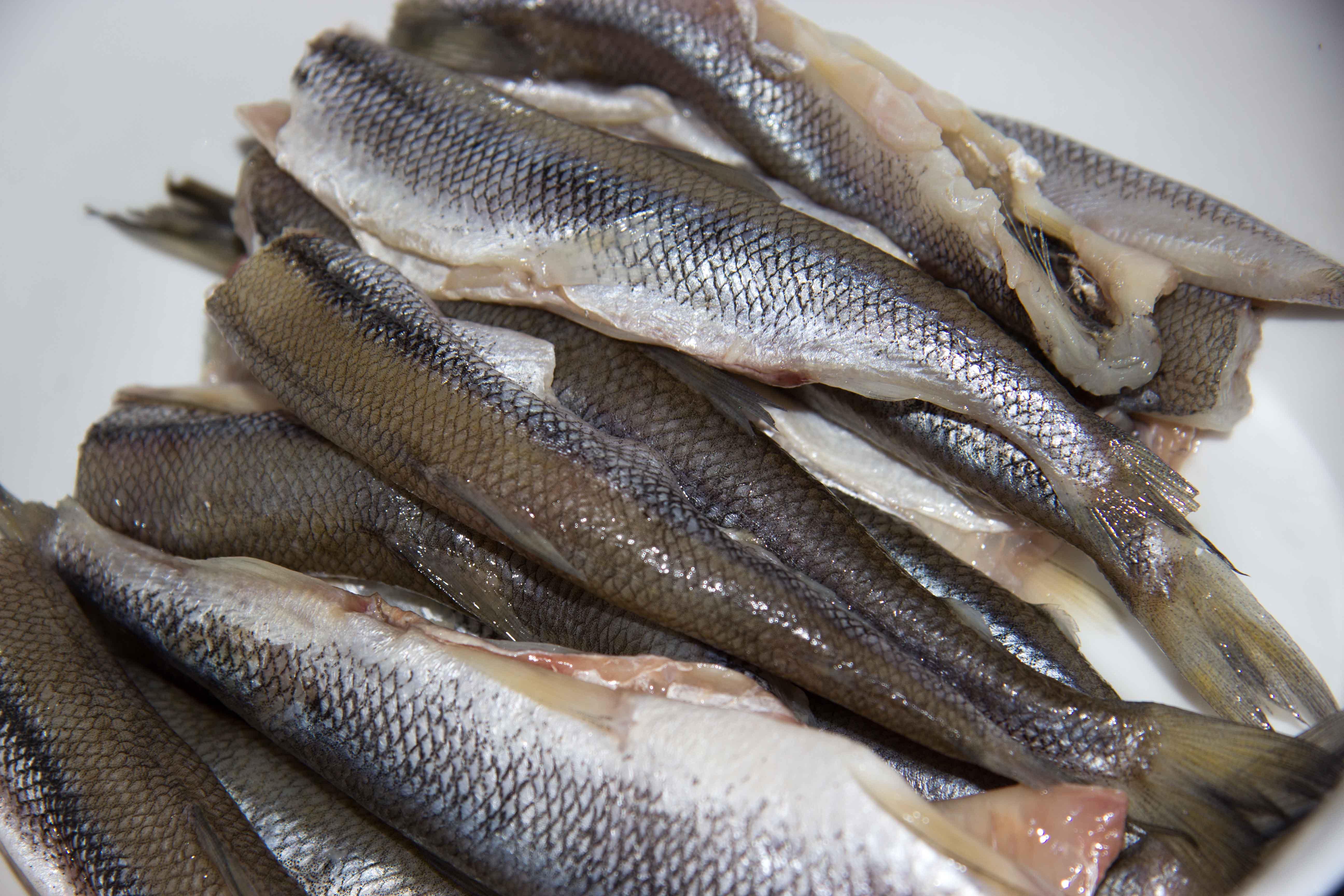 какая рыба ловится на волге в ноябре