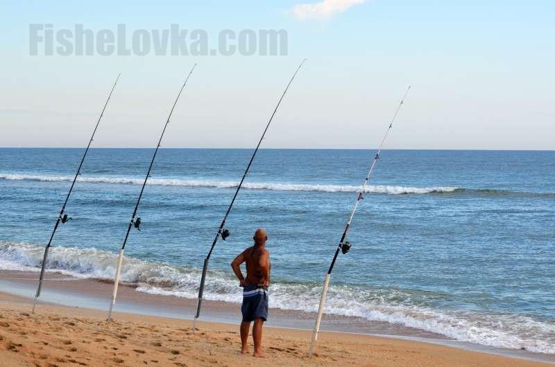 какая рыба ловится в начале июля 2017