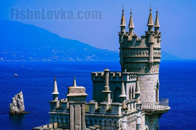 О рыбах Черного моря