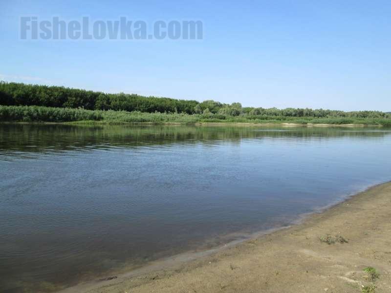 Река вернулась в свое русло.