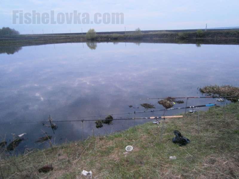 Для ловли окуня используют как поплавчанки, так и донки.