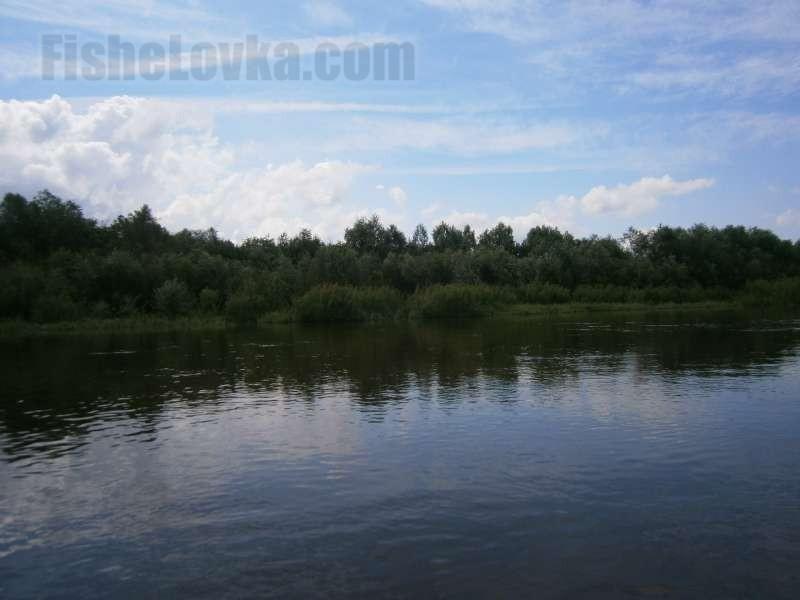 Тихое место на реке идеально для рыбалки.