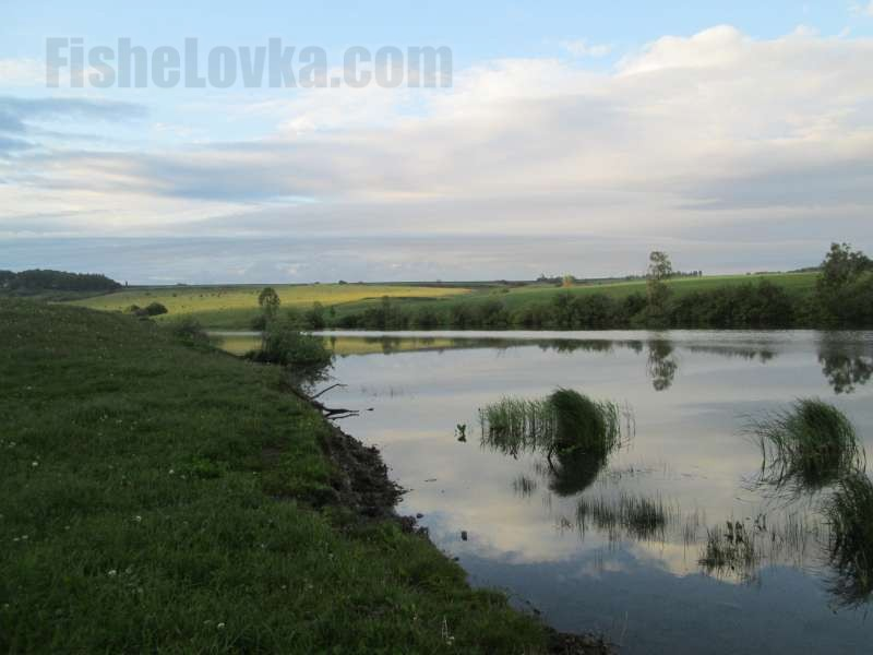 Утренняя зорька на малой реке.