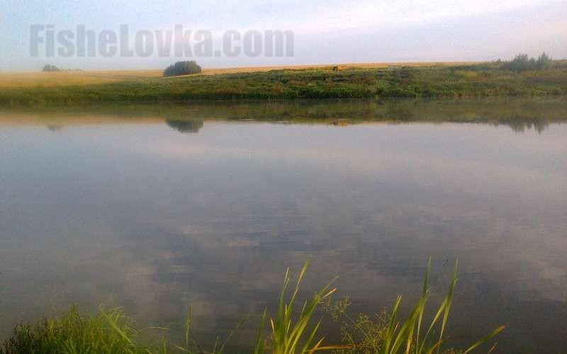 Особенности ловли спиннингом на малых реках