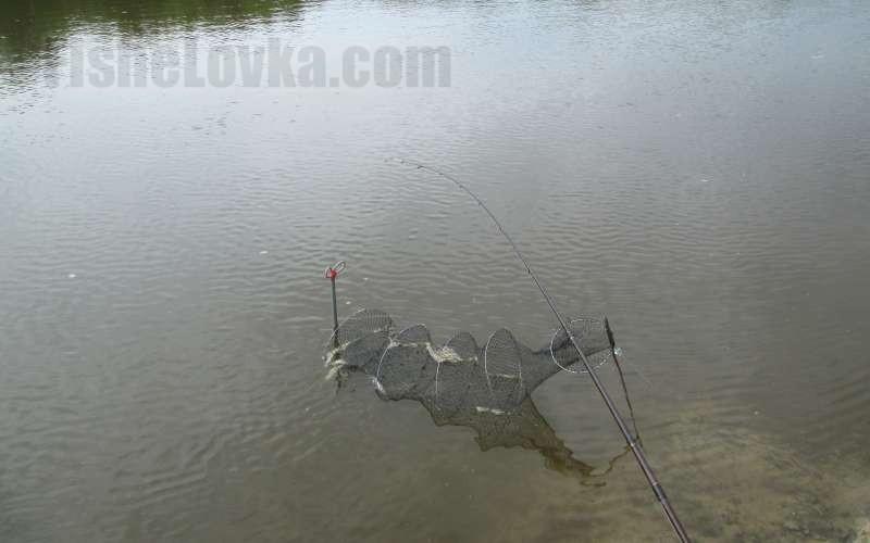 Ловля рыбы на фидер.