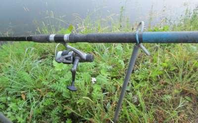 Особенности выбора снастей для ловли поплавочной удочкой на живца