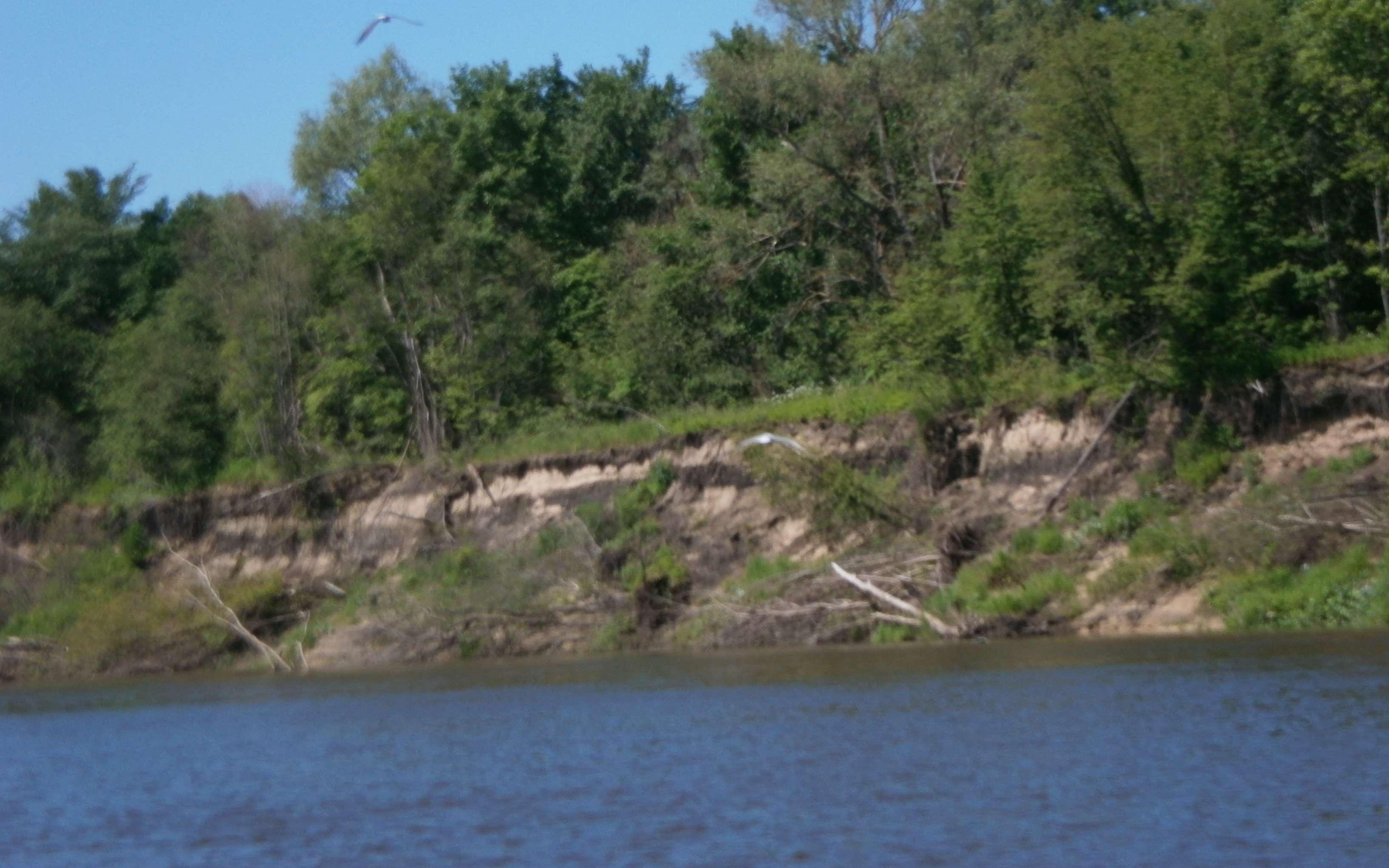 рыбалка на реке с средним течением