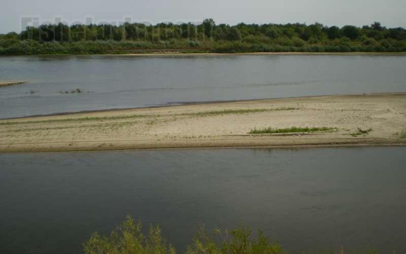 В дельте реки.