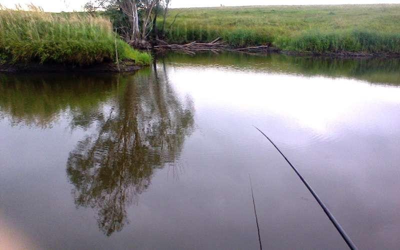 Рыбалка длинным маховым удилищем.