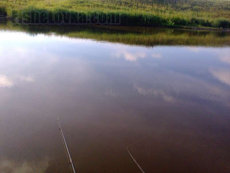Ловля на малой реке.