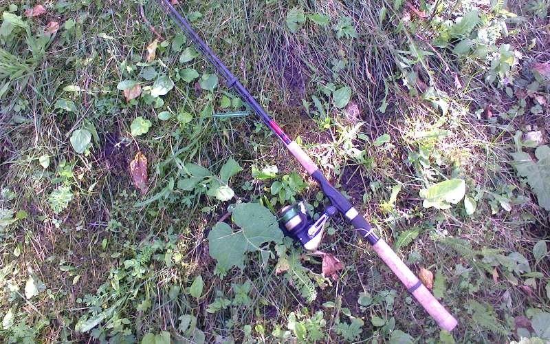 Как стать успешным рыбаком: спиннинговая ловля