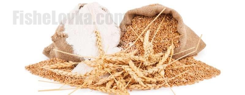 Готовим пшеницу для рыбалки разными способами