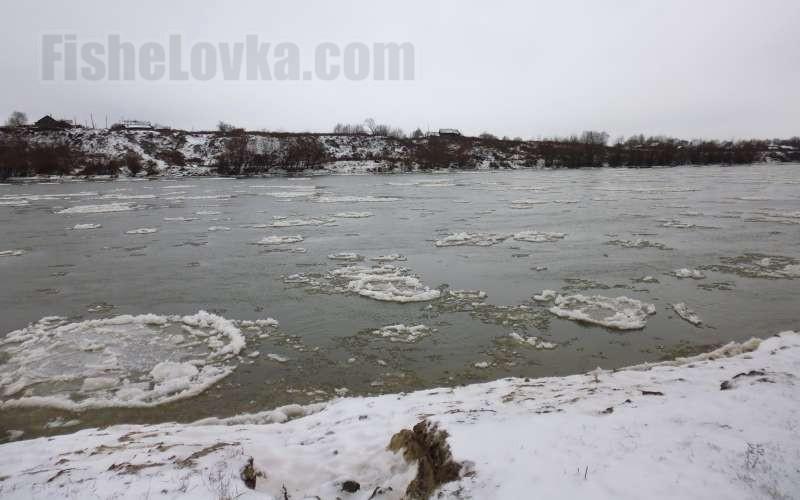 """Начало зимы: по реке плывет """"сало"""" - одиночные льдины."""