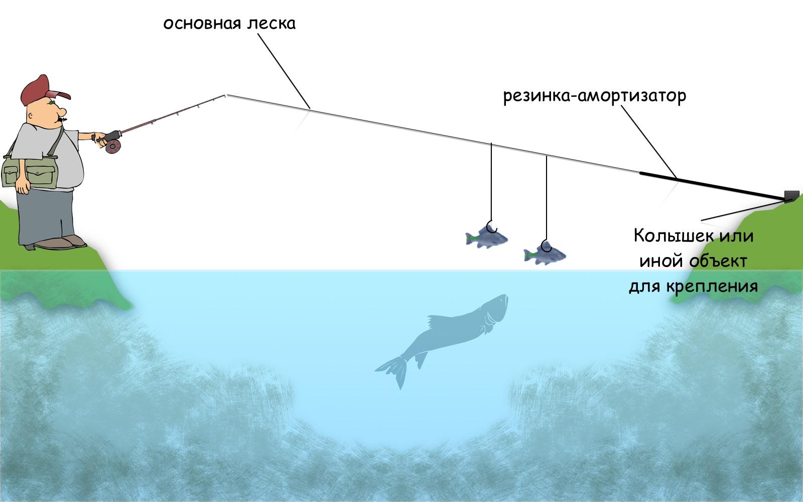 Как сделать перемет и ловить рыбу, не нарушая закон? 66