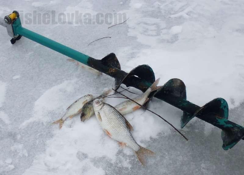 Хитрости ловли рыбы на снасть под названием покаток