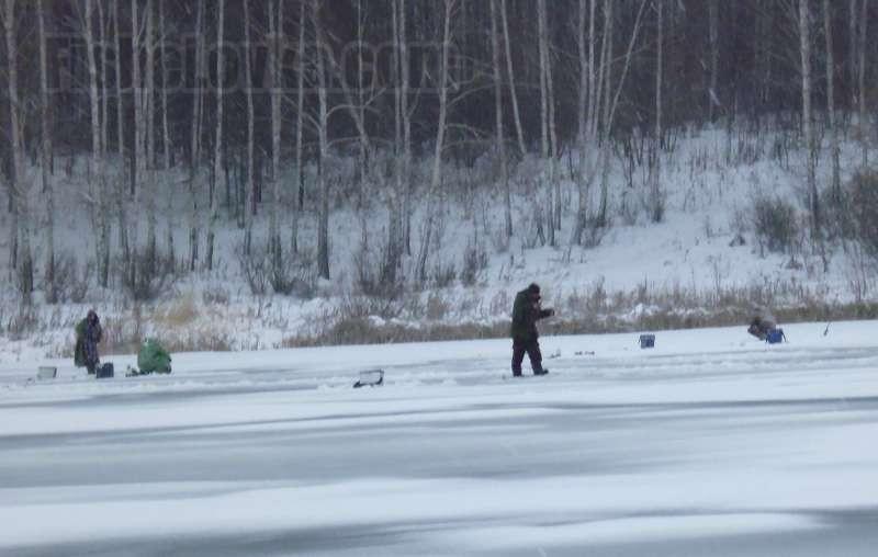 Рыболовы ищут добычу вблизи берега.
