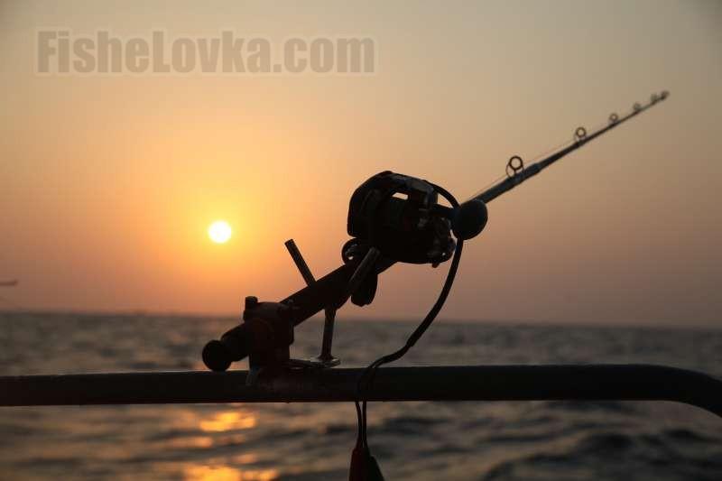 Лодочное удилище для ловли в море.