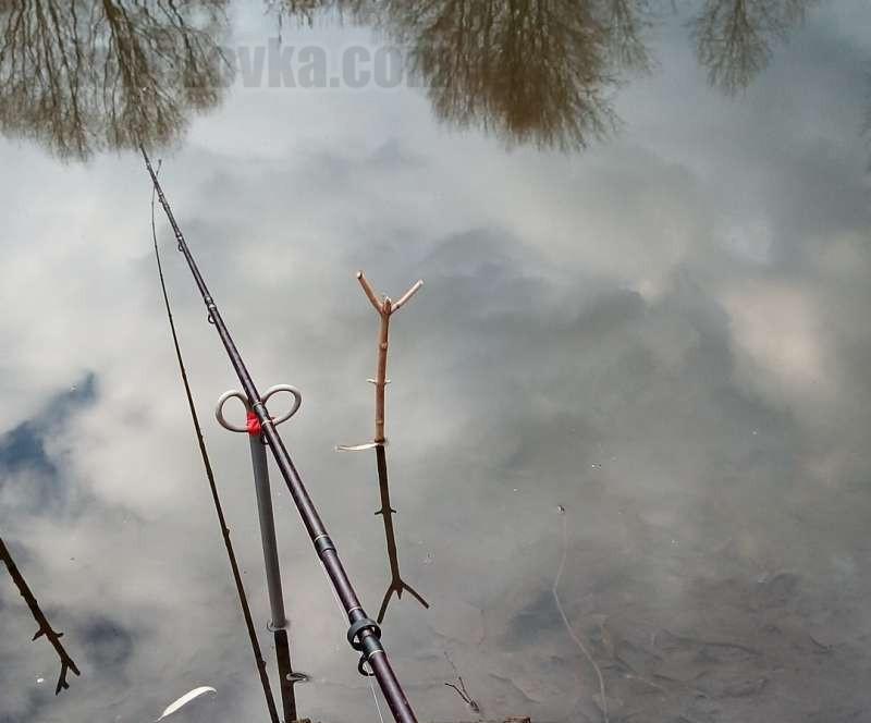 Ловля плотвы на фидер