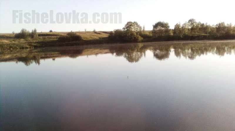 В тихом затоне средней реки