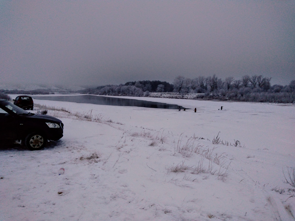Зимний замор рыбы